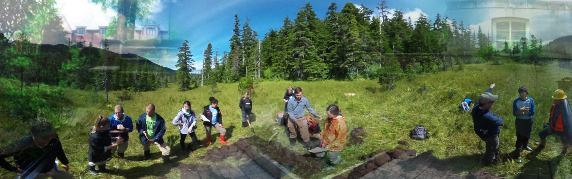CAUSE fieldwork